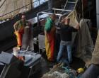 Vissers in Scheveningen repareren de netten