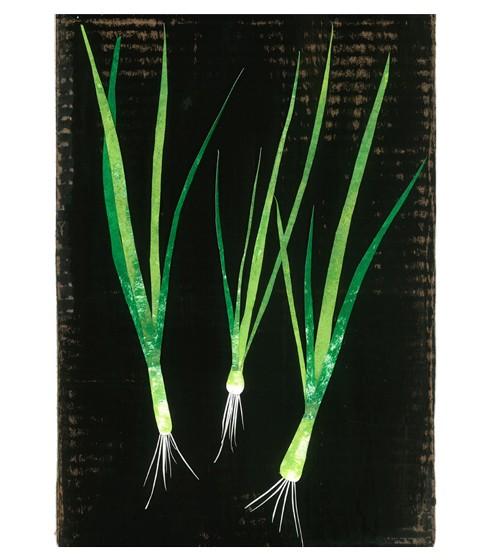 Mirthe Blussé spring onions